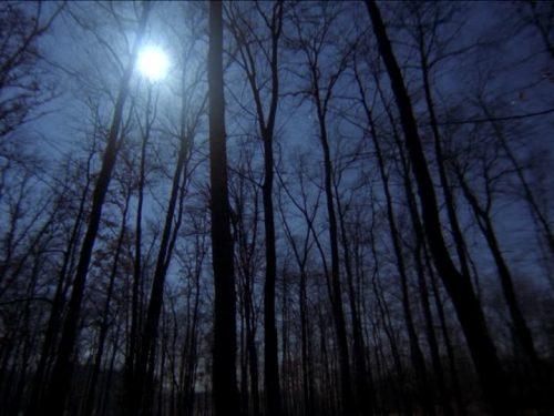 Luna – di Davide Daloisio